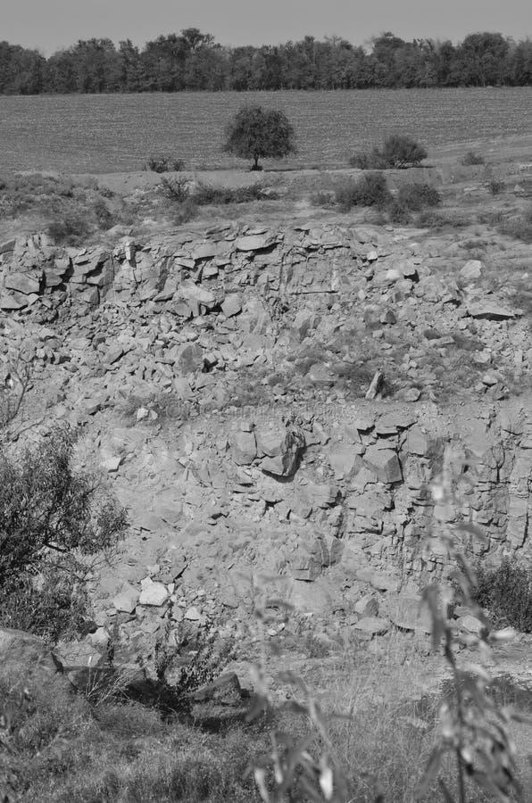 Большой раскаиваться дерева крошечный на краю скалы monochrome стоковое фото rf