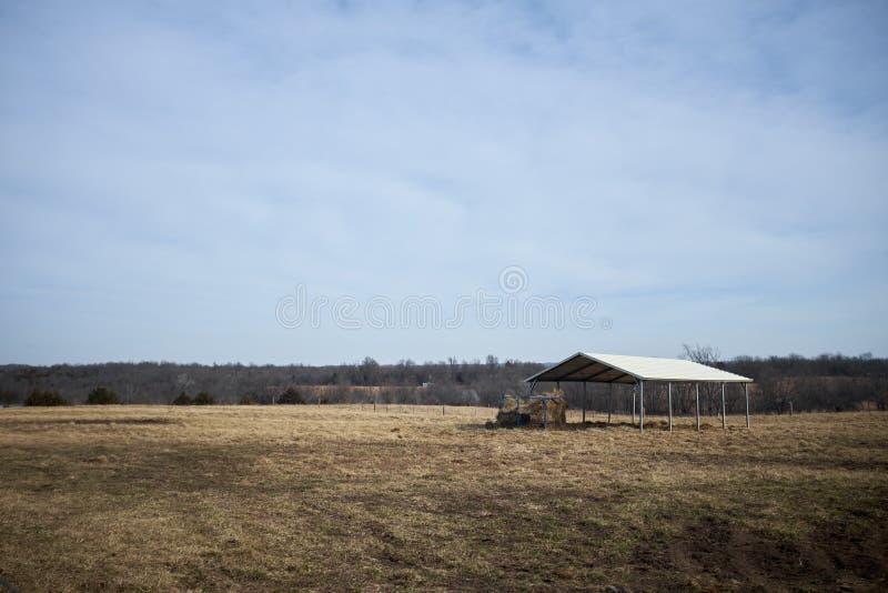 Большой раскройте, который встали на сторону укрытие для поголовья на ранчо стоковое фото