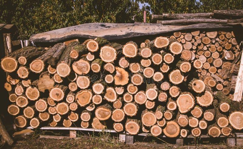 Большой стог журнала древесин стоковое изображение