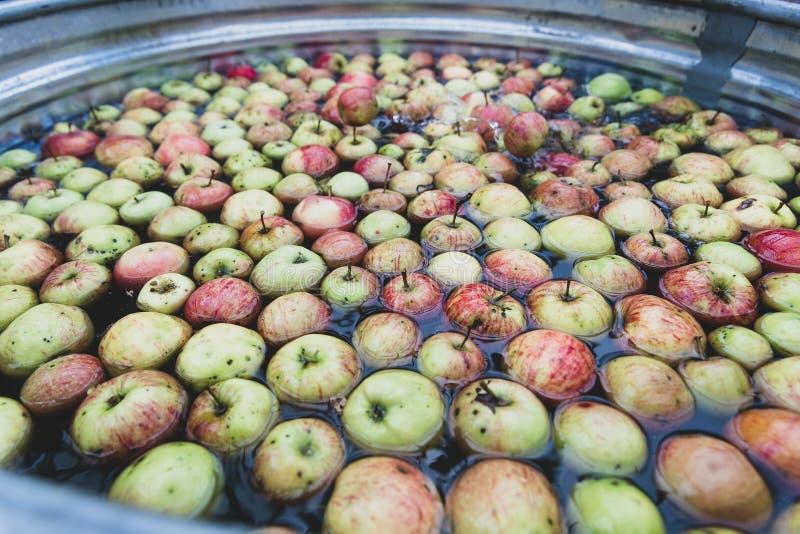 Большой ушат заполнил с свежими яблоками в воде стоковое фото rf