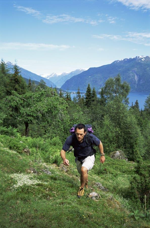 большой hiking человек outdoors стоковые фотографии rf