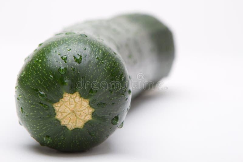 большой zucchini стоковые изображения rf