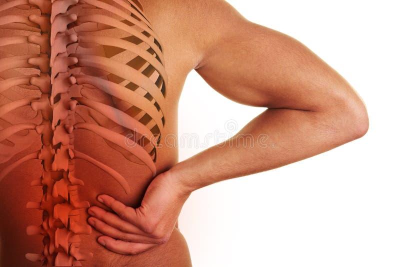 Боль в спине с позвоночником иллюстрация вектора