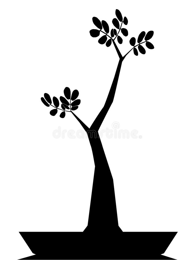 бонзаи иллюстрация штока