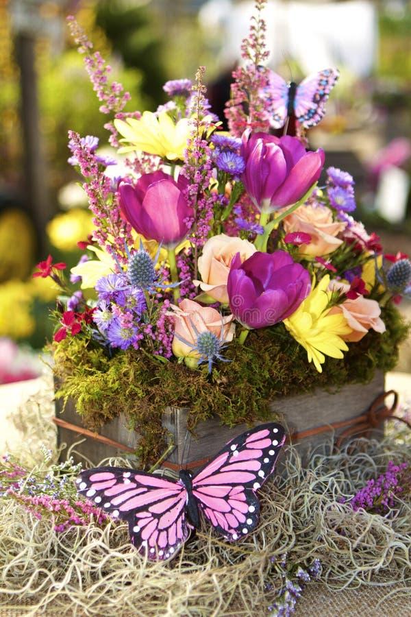 Бонус бабочки стоковые фотографии rf