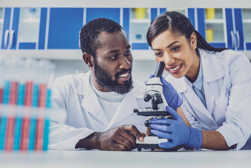 Бородатый химический ассистент смотря его академичного советника стоковые фото