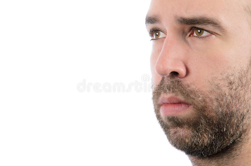 Бородатый человек стоковые фото