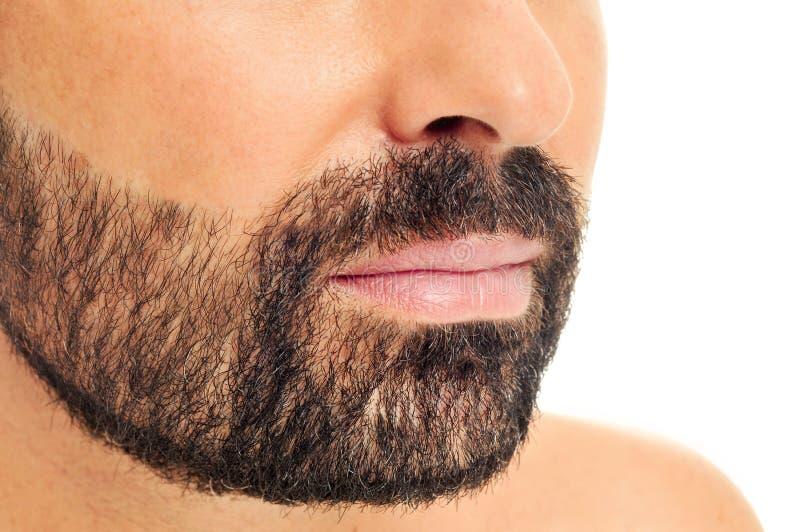 бородатые детеныши человека стоковая фотография rf