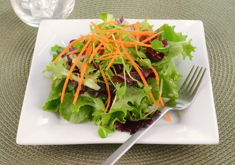 Бортовой салат Стоковая Фотография