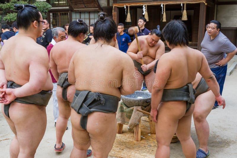 Борцы Sumo колотя Mochi стоковая фотография