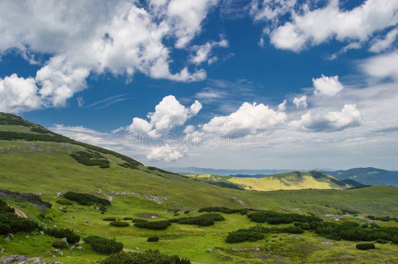 Боснийская красота стоковые изображения rf