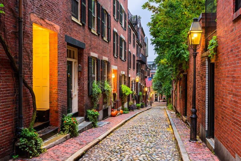Download Бостон, Массачусетс, США стоковое фото. изображение насчитывающей ботаники - 80678020