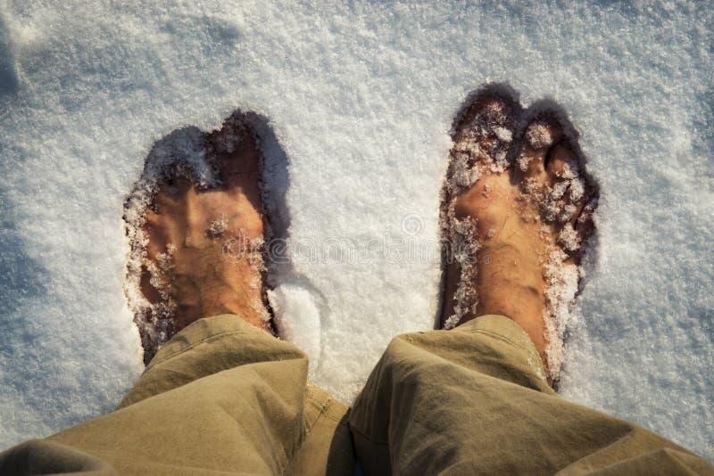 Босые ноги в белом снеге стоковая фотография rf