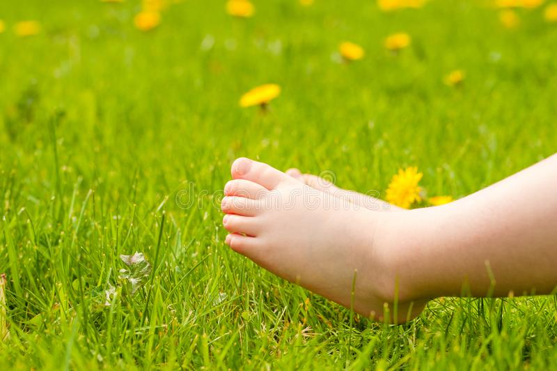 Босые ноги ребенка отдыхая на солнечном зеленом луге с яркой выкрикивают стоковое фото rf