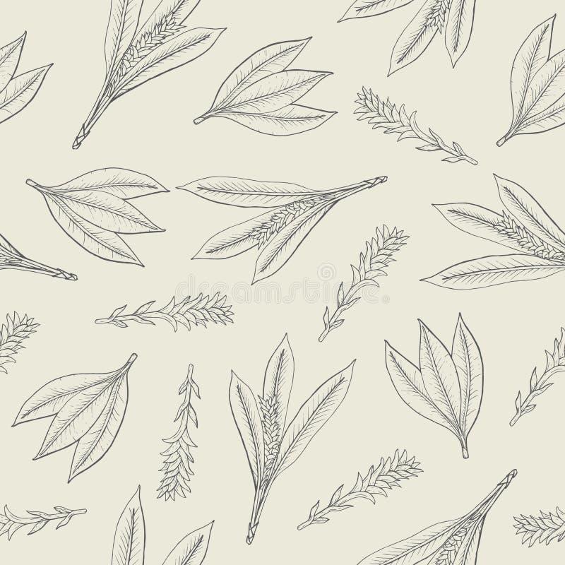 Ботаническая безшовная картина с листьями и цветорасположениями турмерина Рука Herbaceous завода нарисованная с линиями контура д бесплатная иллюстрация