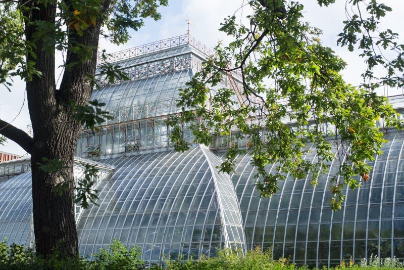 Ботаническая теплица в парке стоковые изображения rf