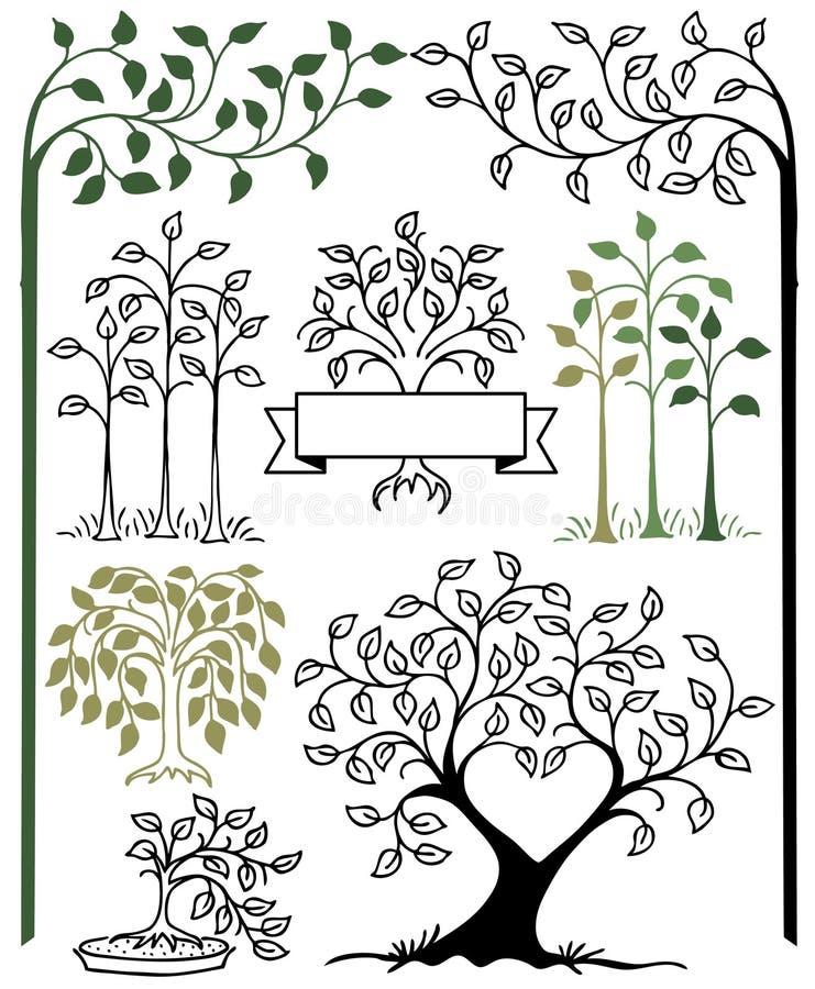 Ботанический комплект дерева иллюстрация штока