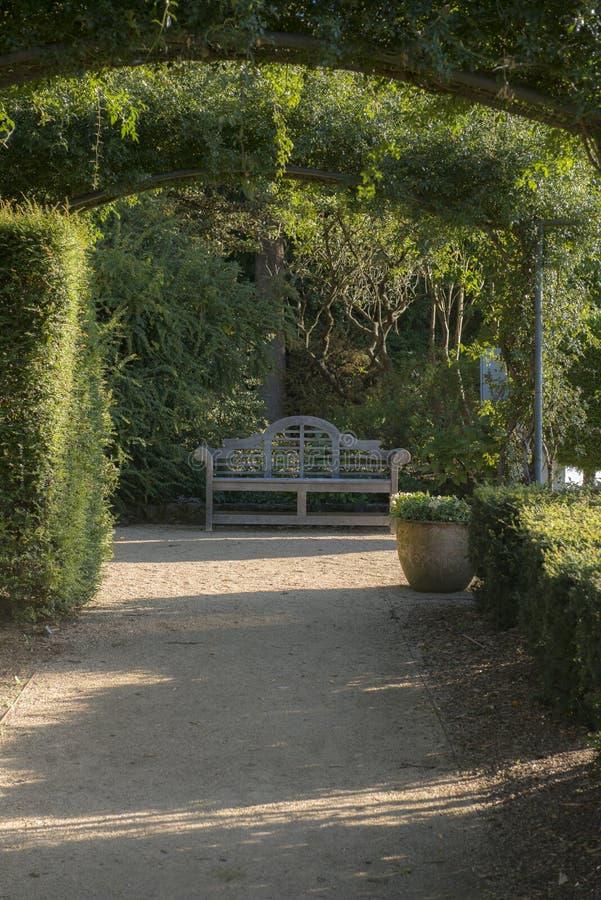 Ботанический сад в голубом национальном парке гор стоковые изображения