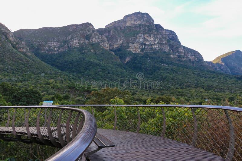 Ботанический сад Кейптаун Южная Африка стоковая фотография rf