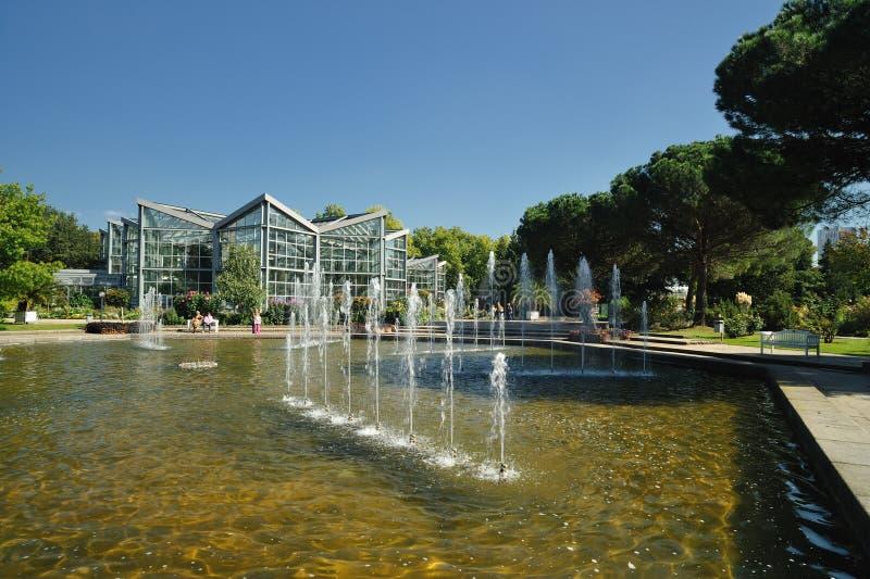 ботанический сад frankfurt стоковые фотографии rf