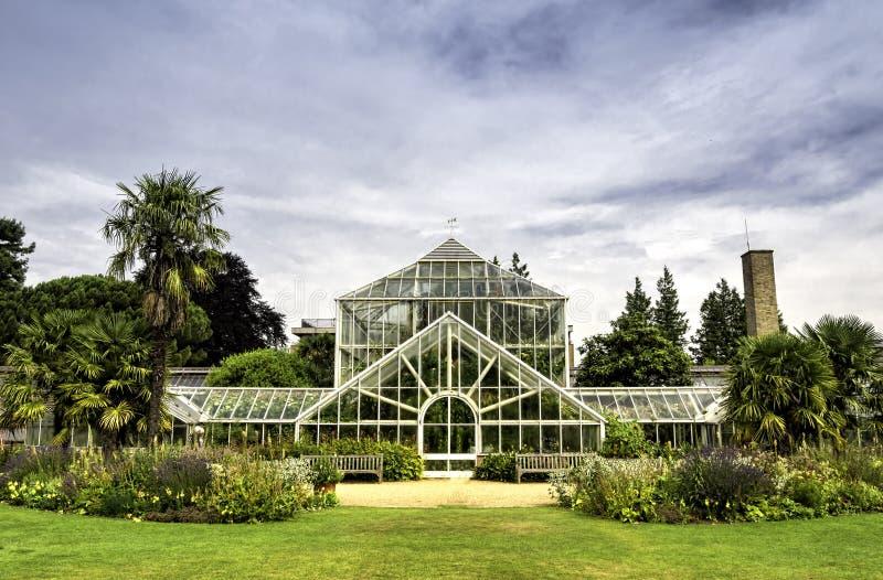 Ботанический сад в Кембридже, Англии стоковые изображения