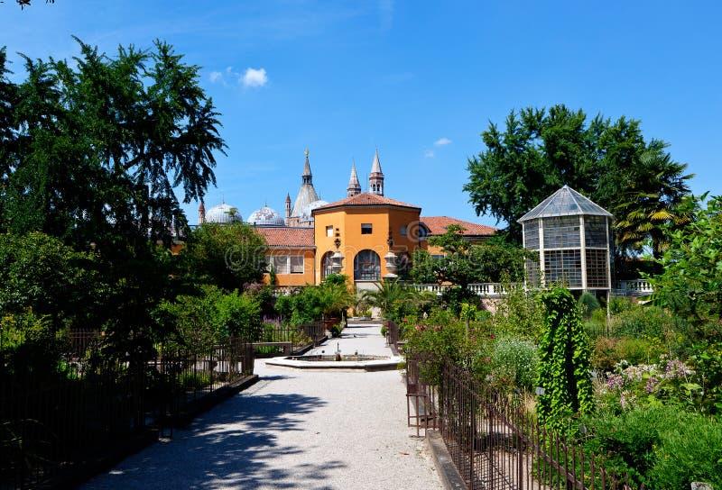 Ботанический сад, Падуя, Италия стоковые изображения