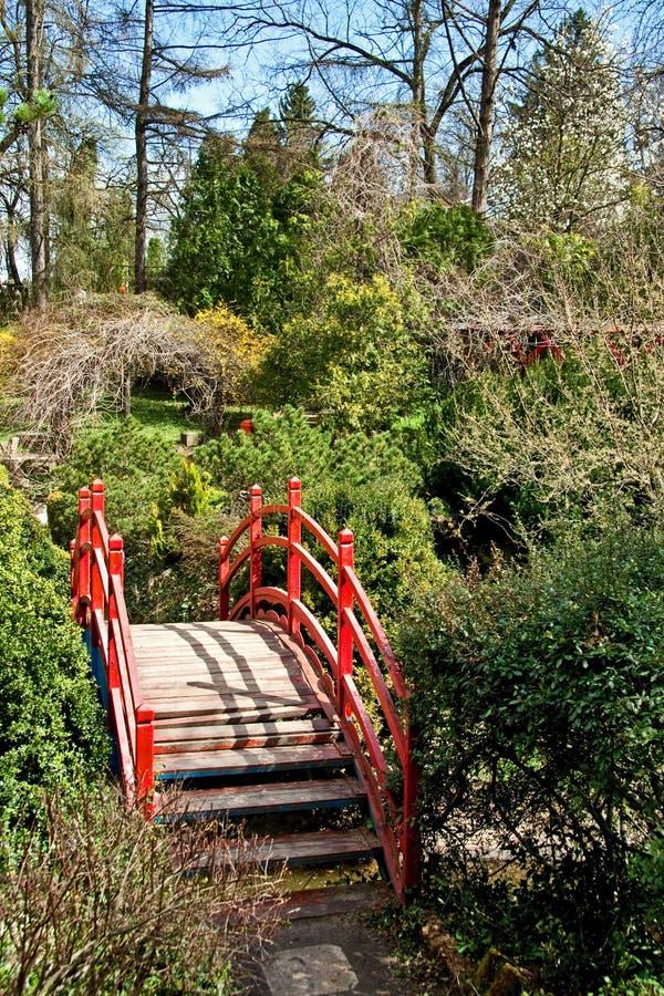 Ботанический сад стоковая фотография rf