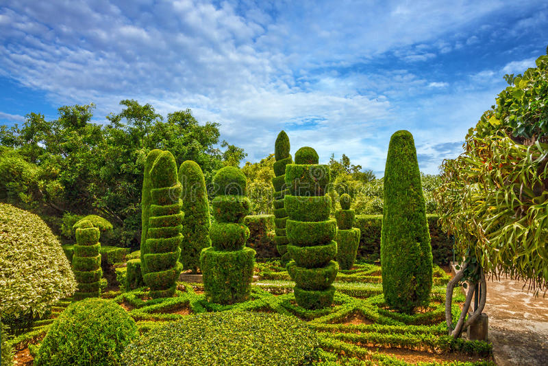 Ботанический сад Monte, Фуншал, остров Мадейры, Португалия стоковая фотография