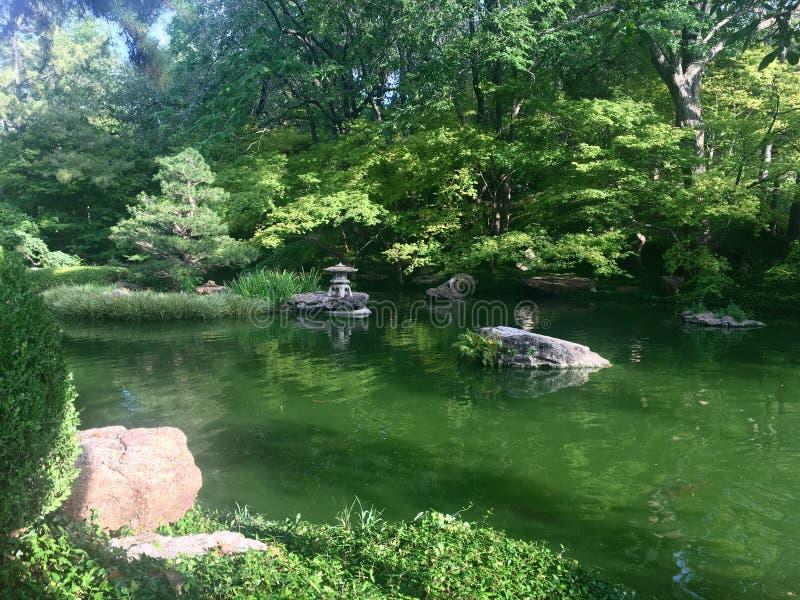Ботанический японский сад воды стоковая фотография rf
