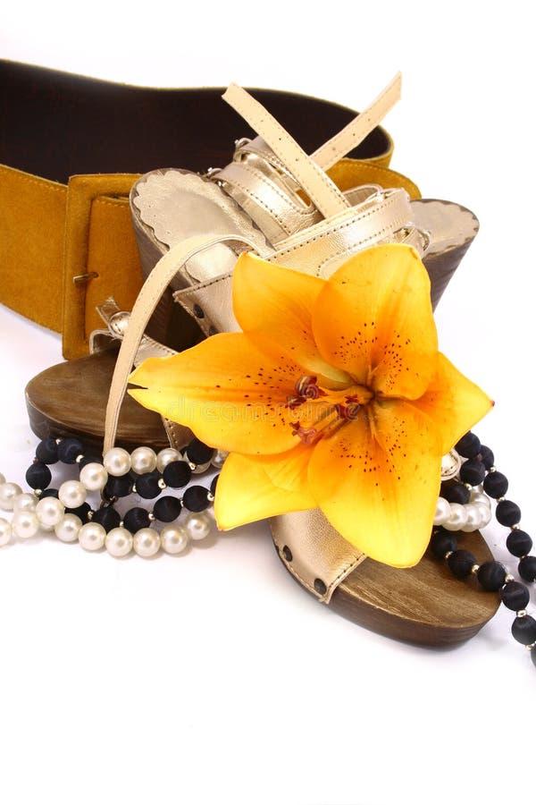 ботинки пояса изолированные золотом стоковая фотография rf