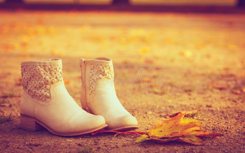 Ботинки стоя на листьях стоковые фотографии rf