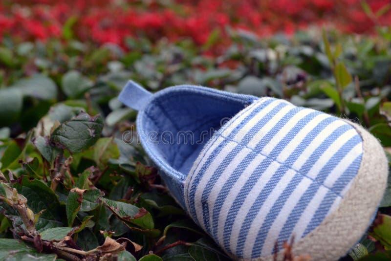 Ботинок младенца на траве стоковые фотографии rf