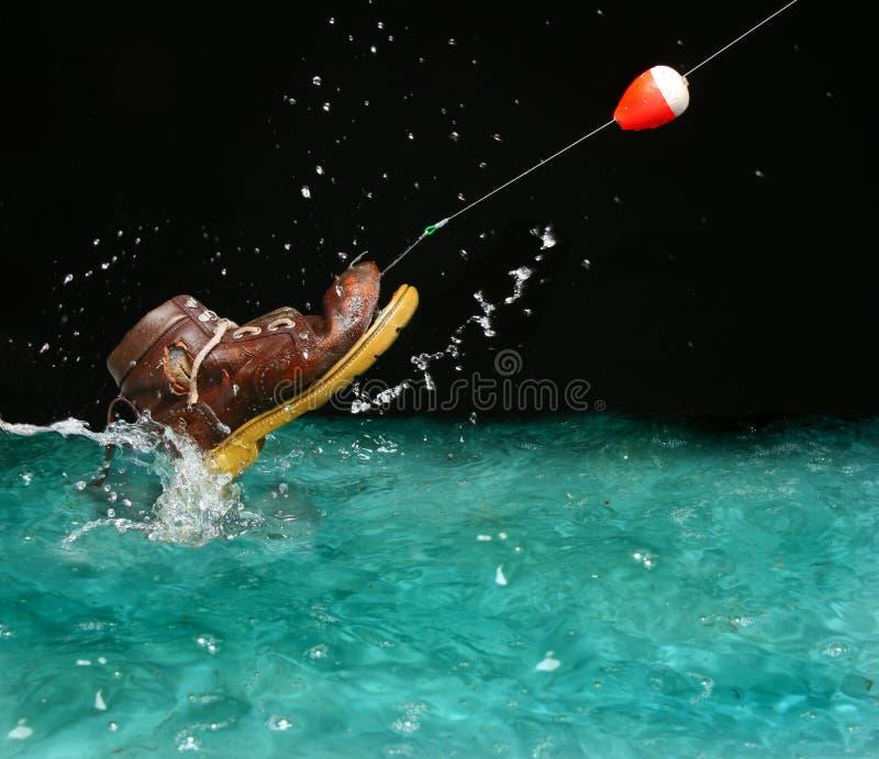 ботинок рыб разочарованием что стоковое фото rf