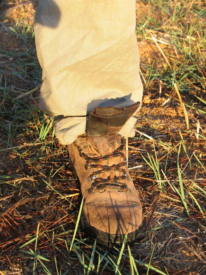 ботинок trekking стоковая фотография