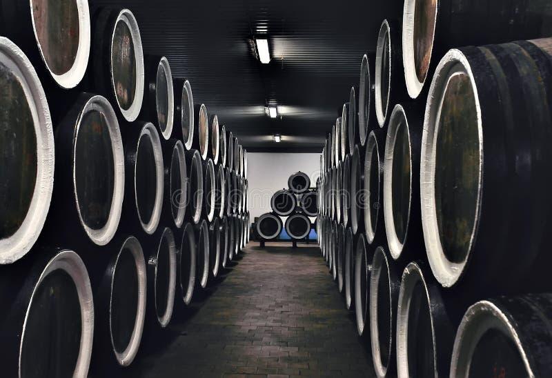 Бочонки вина деревянные штабелированные в погребе винодельни стоковое изображение rf
