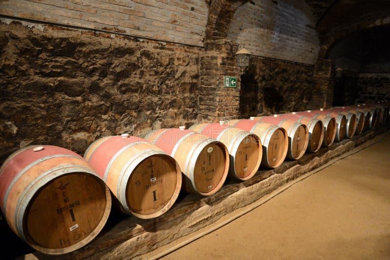 Бочонки вина на винодельне Санте Рите стоковые фотографии rf