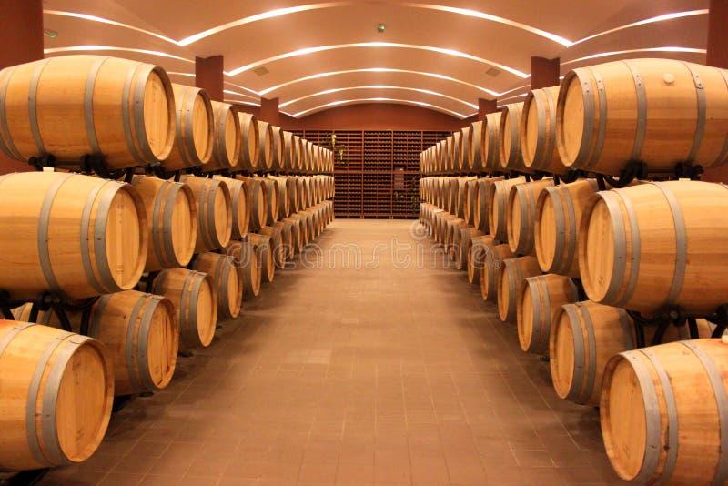 Бочонки винодельни стоковые фотографии rf