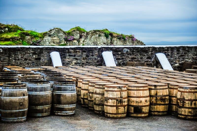 Бочонки вискиа морем стоковые фото