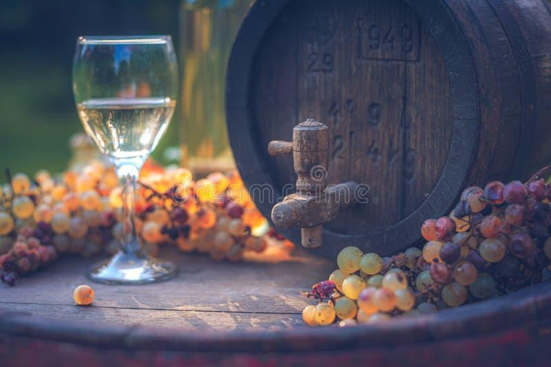 Бочонок вина с белыми виноградинами и бокалом вина в сезоне сбора, Венгрией стоковое изображение