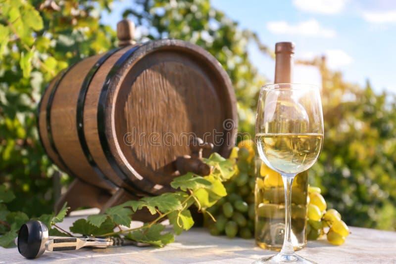 Бочонок, стекло и бутылка белого вина на таблице в винограднике стоковые изображения
