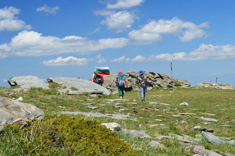 Болгарский национальный флаг высокий в горе Rila стоковое фото rf