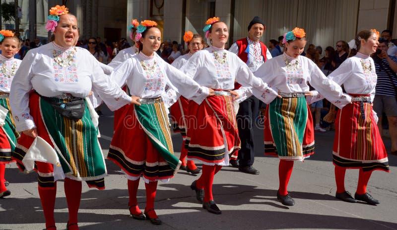 Болгарский фольклорный танцор стоковая фотография rf