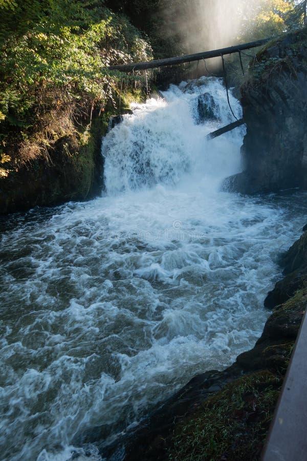 Более низкие падения Tumwater стоковое изображение rf