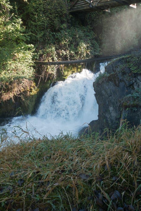 Более низкие падения Tumwater стоковое фото rf