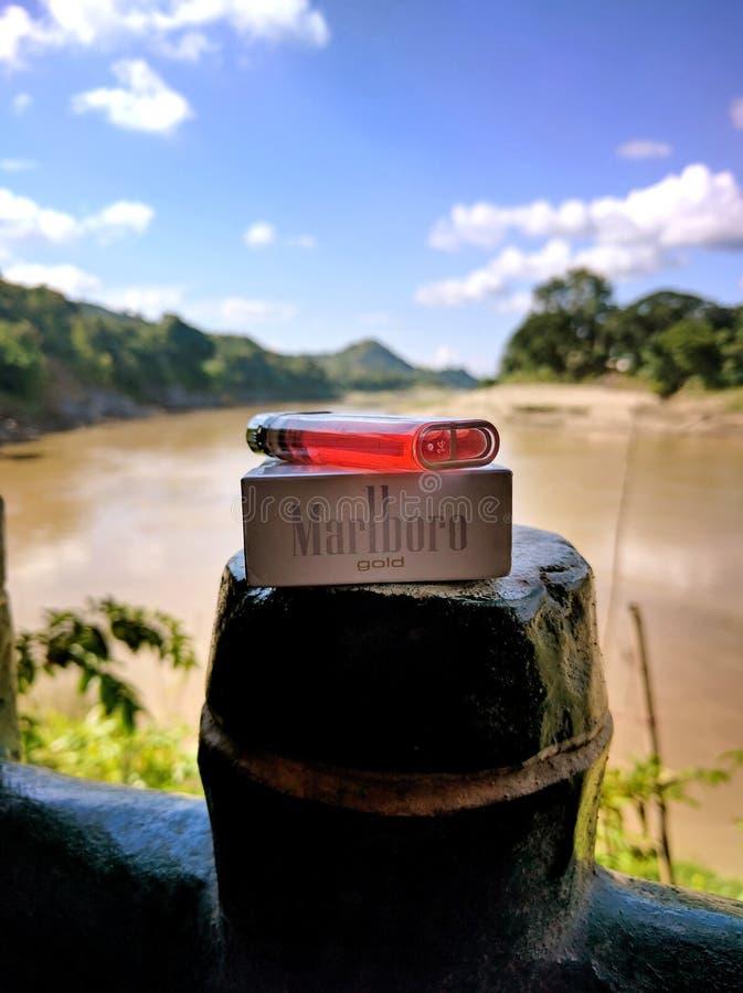 более светлое место природы дерева держателя реки золота Marlboro сигареты стоковые фото