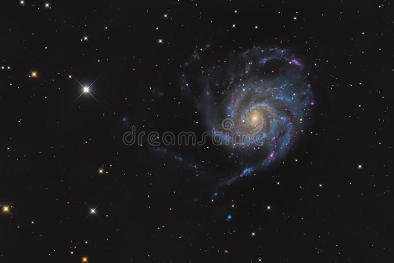 Более Messier 101 или галактика Pinwheel в майоре Ursa созвездия принятом с камерой CCD и фокусное расстояниое средства выдвигают стоковые фото