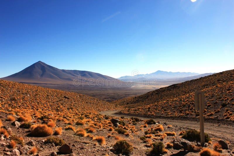 Боливийская пустыня стоковые изображения rf