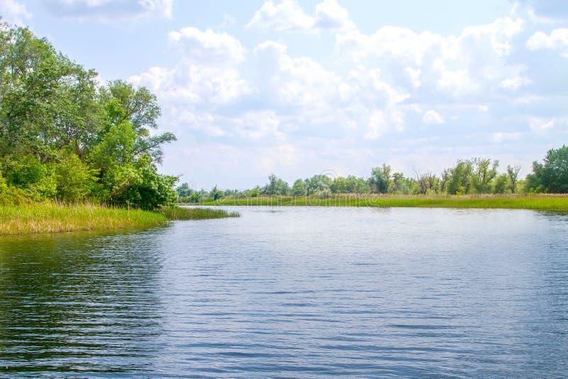 Болота и Kherson Dnieper реки ландшафта стоковые фотографии rf