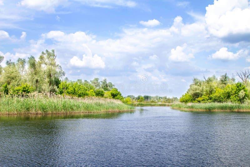 Болота и Kherson Dnieper реки ландшафта стоковое изображение