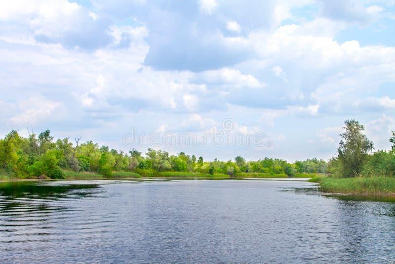 Болота и Kherson Dnieper реки ландшафта стоковая фотография